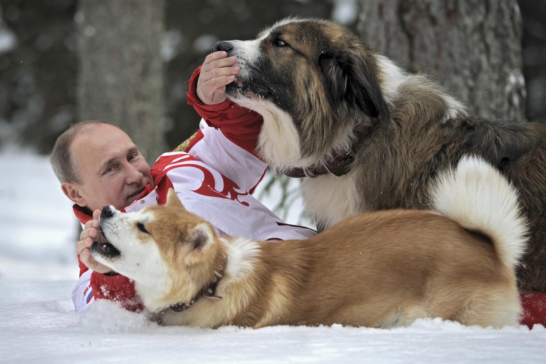 V. Putinas su šunimis